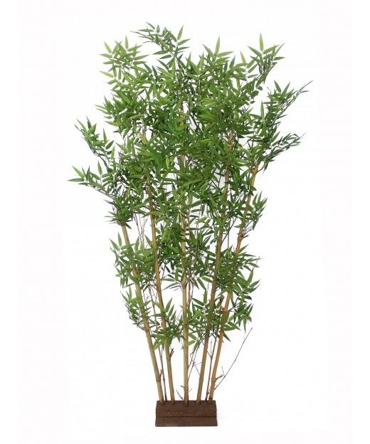 Haie de bambous orientale
