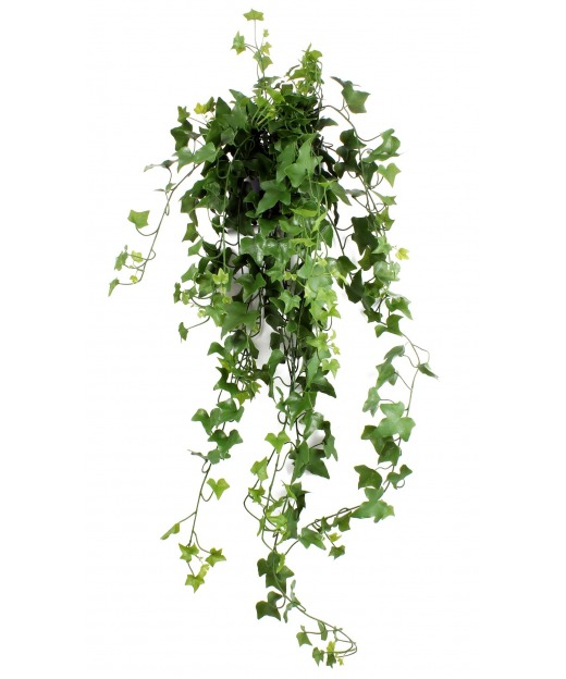 Onion grass en pot 55 cm