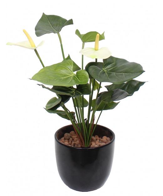 Anthurium artificiel blanc