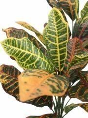 Croton artificiel vert et jaune