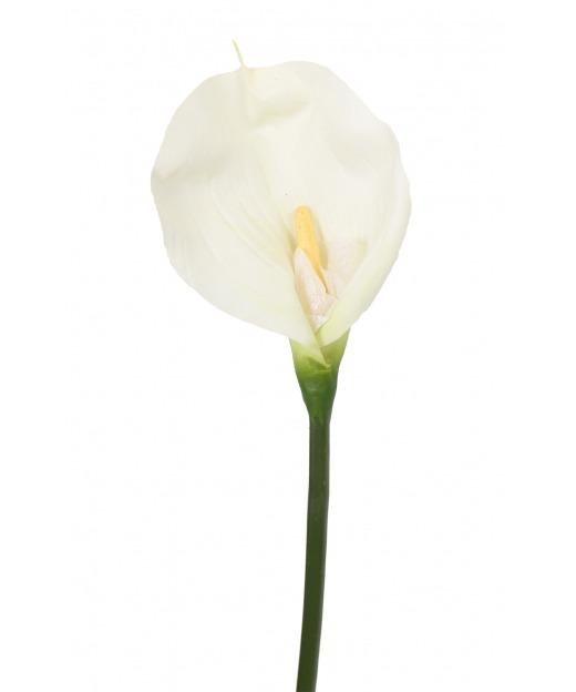 Calla artificielle blanche