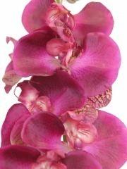Phalaenopsis artificielle rose