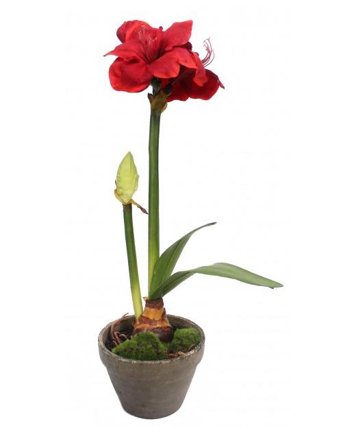 Phalaenopsis artificiel mini 37 cm