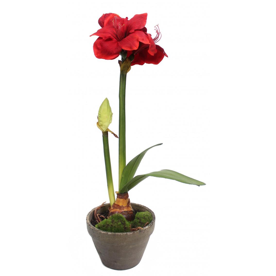 Phalaenopsis artificiel mini
