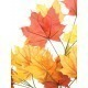 Kalanchoe artificiel rouge