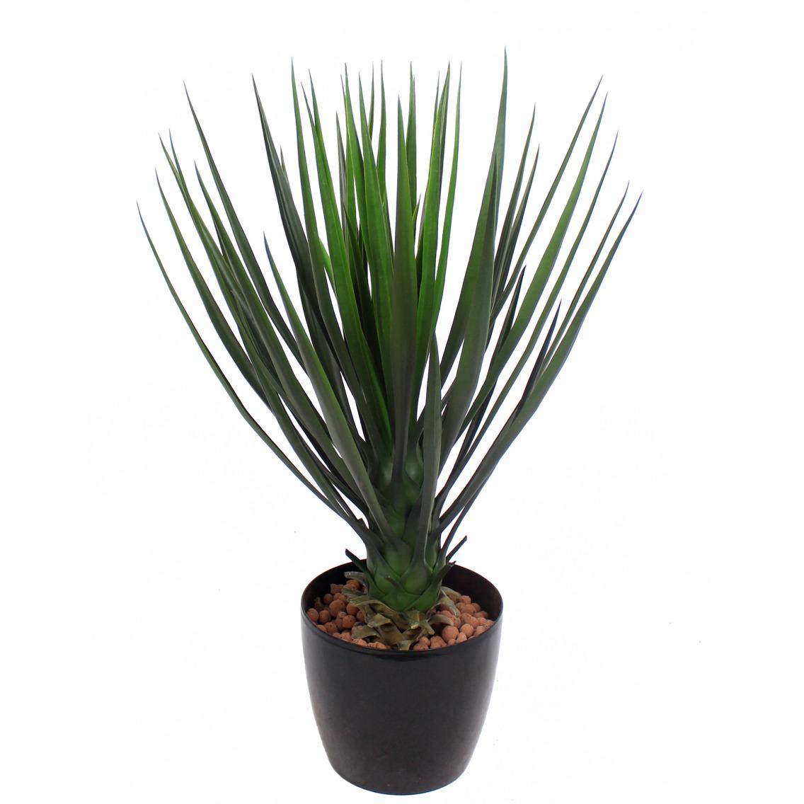 Yucca rostrata artificiel