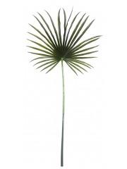 Feuille de palmier chanvre artificielle