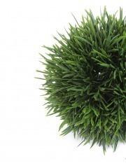 Boule d'herbe artificielle