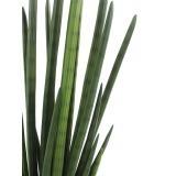 Sansevière artificielle verte foncée