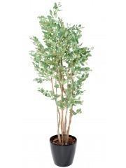 Eucalyptus artificiel baies