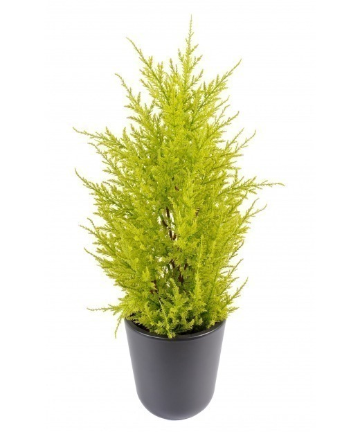 Juniperus artificiel 55 cm