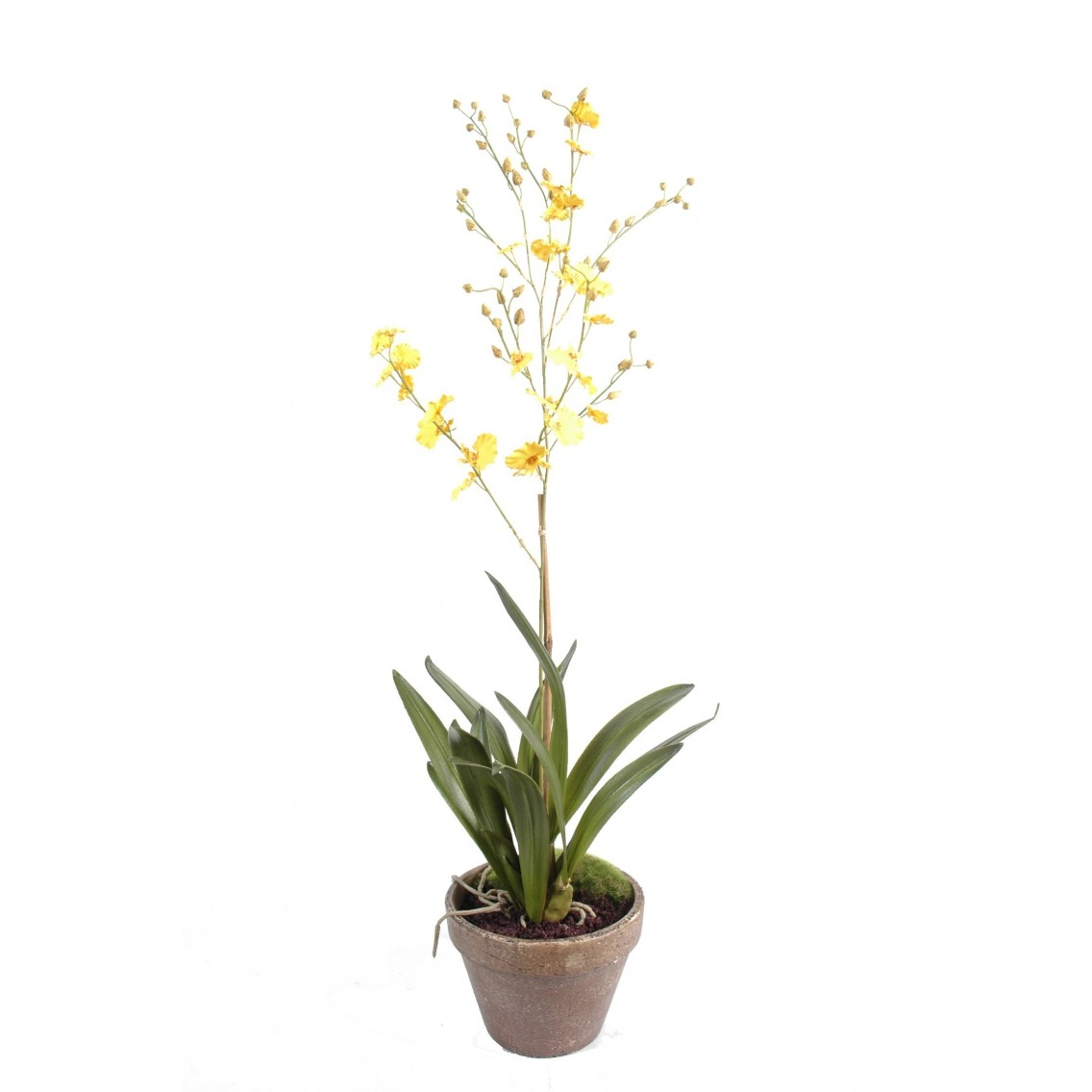 Orchidée artificielle fleurie en pot