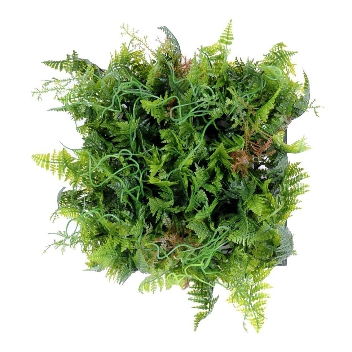Base végétale en plaque