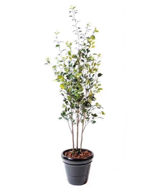 Plantes et arbres artificiels pour l 39 ext rieur artiplantes for Arbres artificiels pour exterieur
