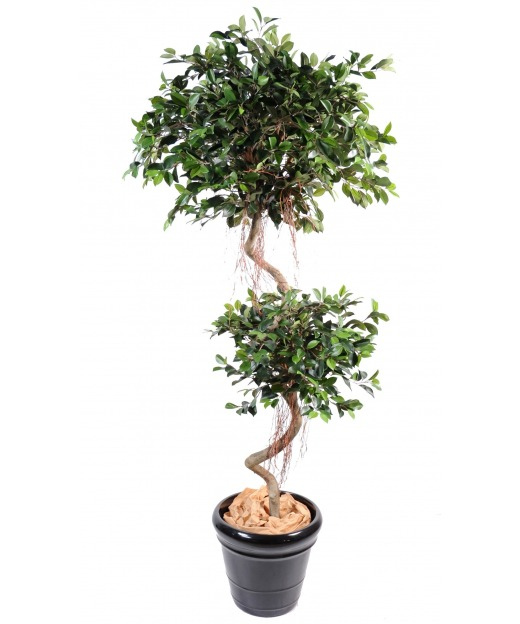 ficus artificiel vente de ficus artificiels en pot artiplantes. Black Bedroom Furniture Sets. Home Design Ideas