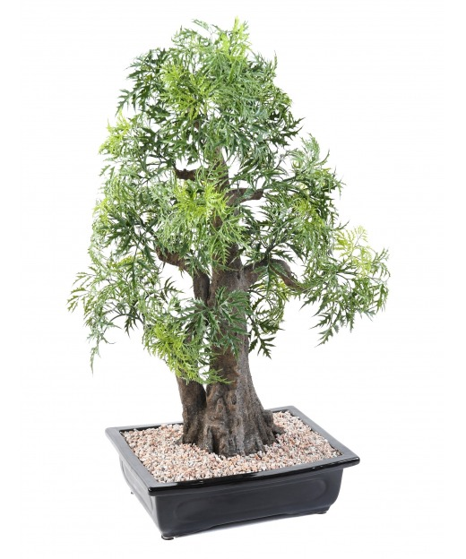 Bonsaï artificiel aralia 80 cm