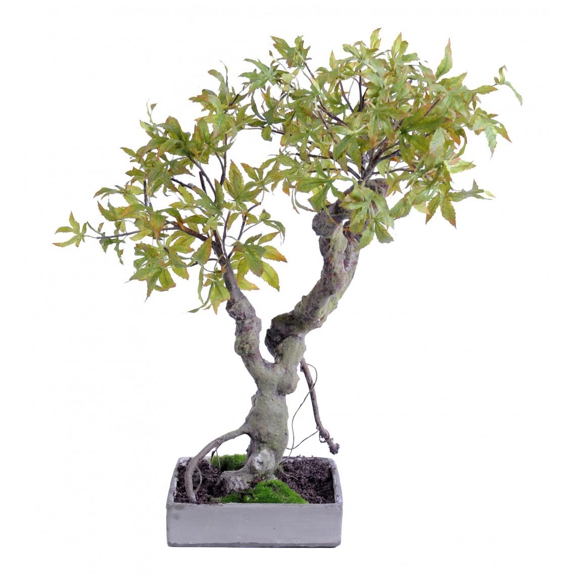 Mini érable artificiel bonsaï sur coupe