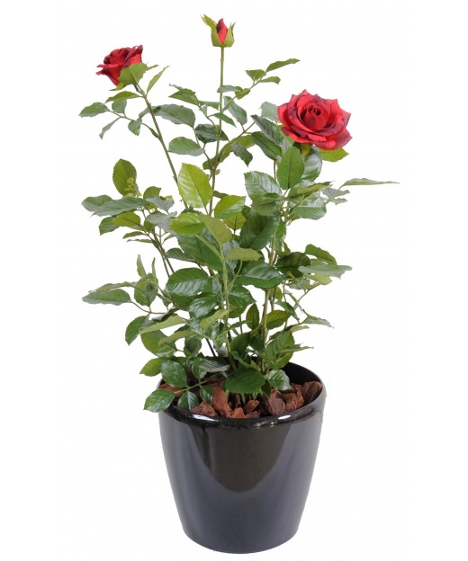 Rosier artificiel rouge 60 cm