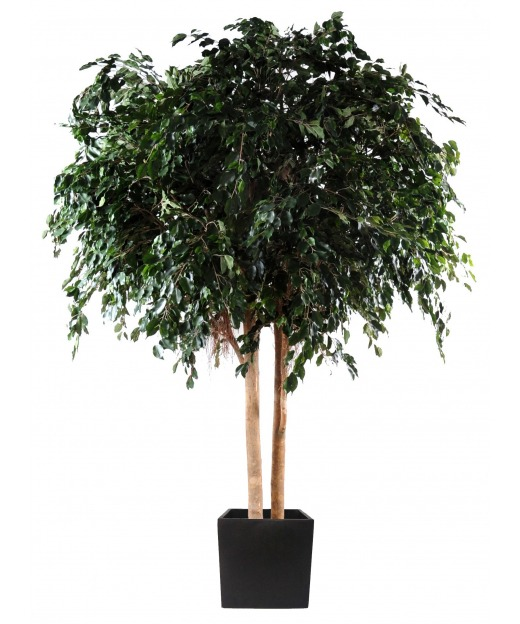 Grand ficus artificiel 350 cm