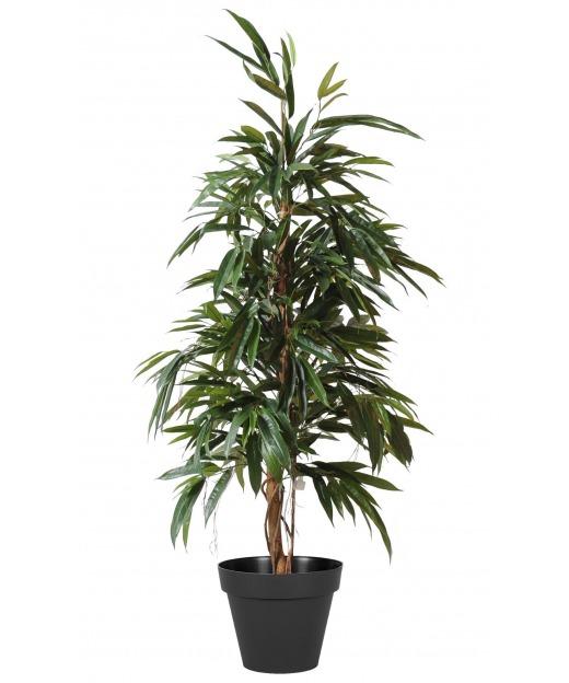 Ficus artificiel longues feuilles