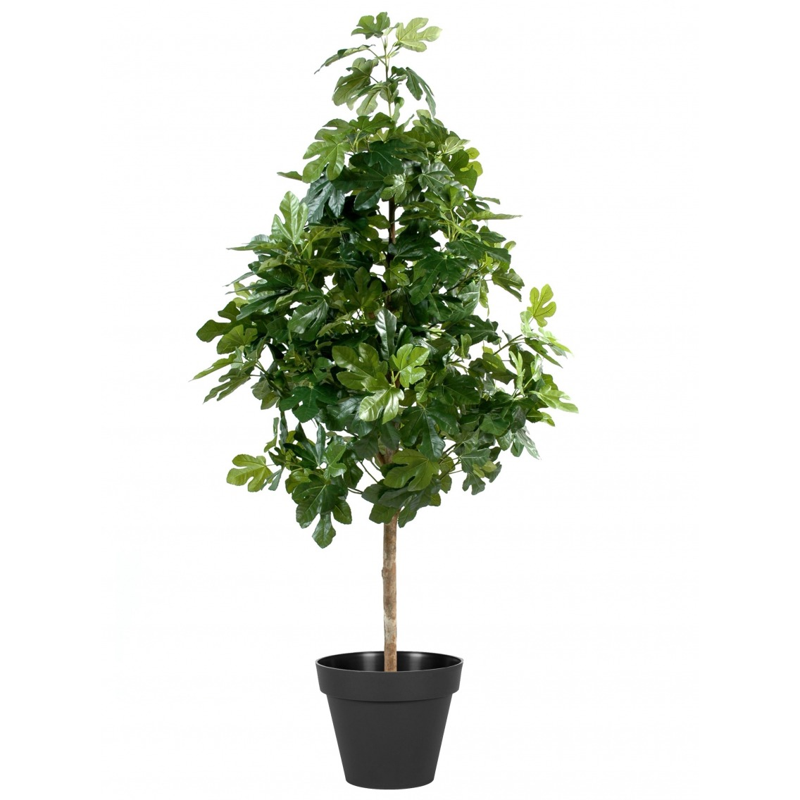 Figuier artificiel 170 cm ficus artificiels artiplantes for Ficus artificiel