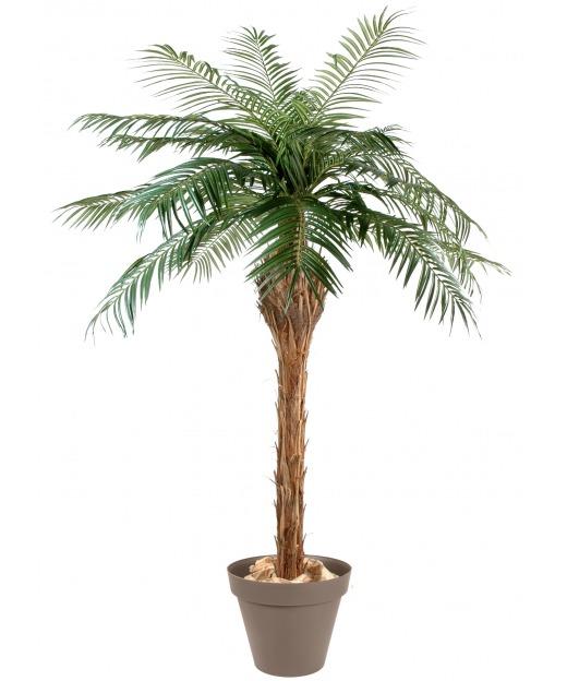 Palmier artificiel phoenix 210 cm
