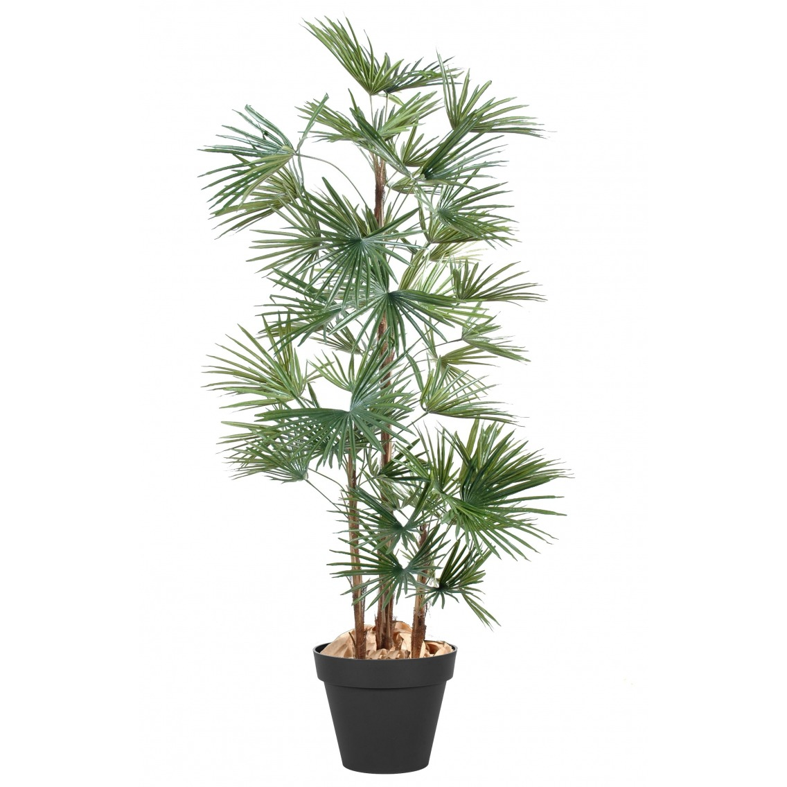 Palmier artificiel éventail