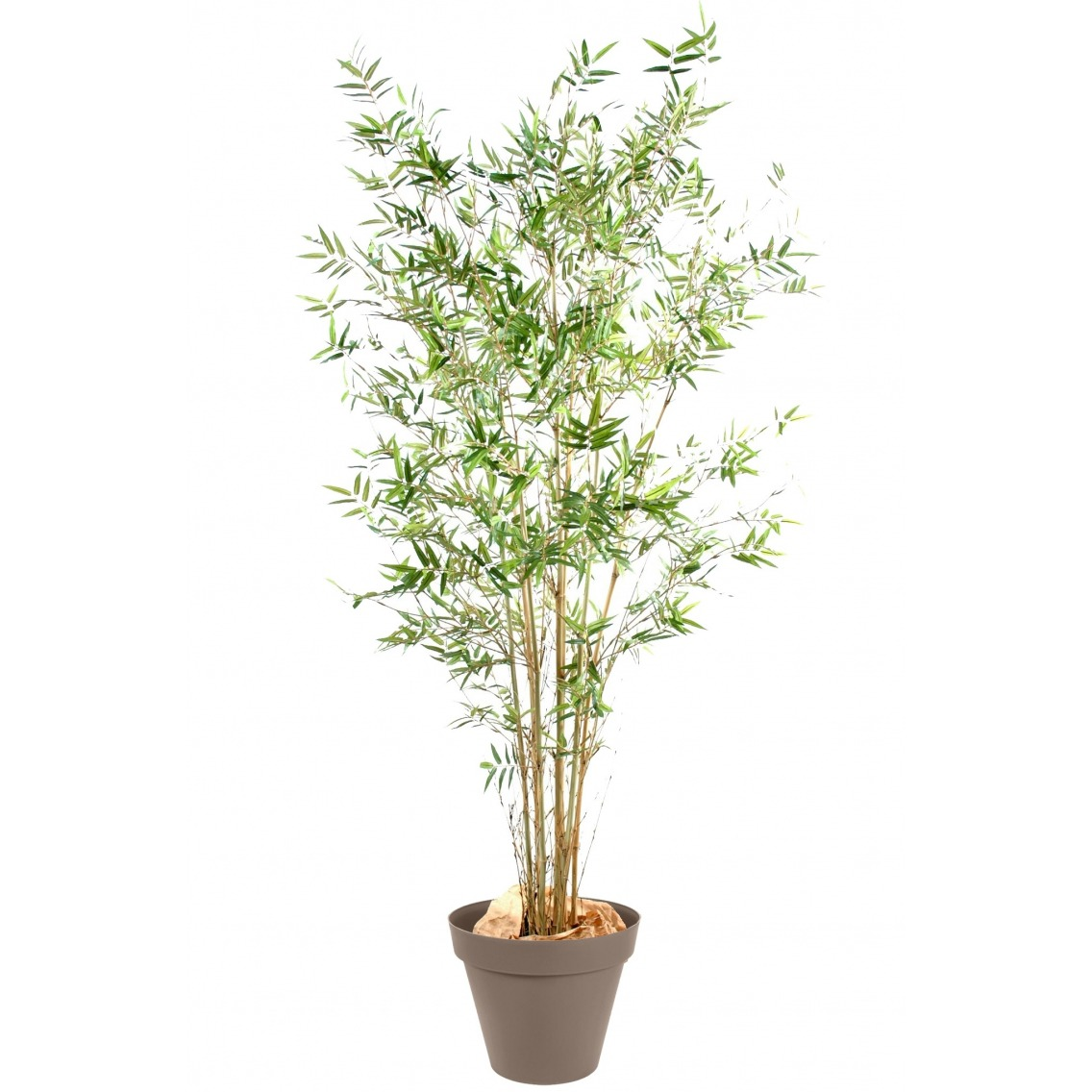 Bambou fargesia artificiel bambous artificiels artiplantes for Arbre bambou artificiel