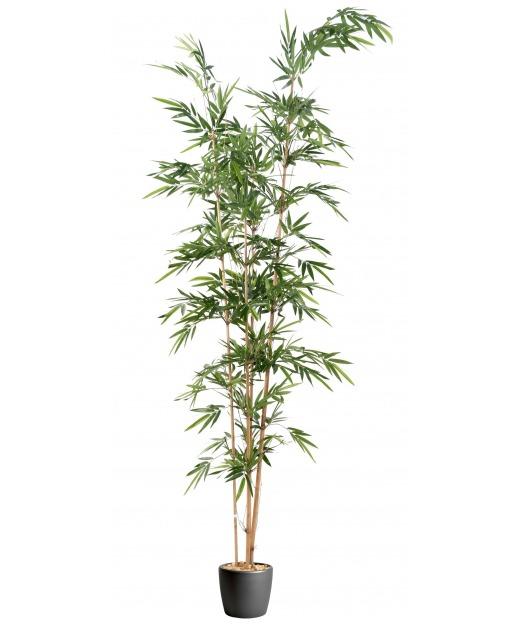 Bambou artificiel longiforme 320 cm