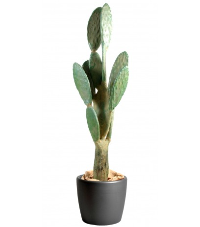 Cactus artificiel géant