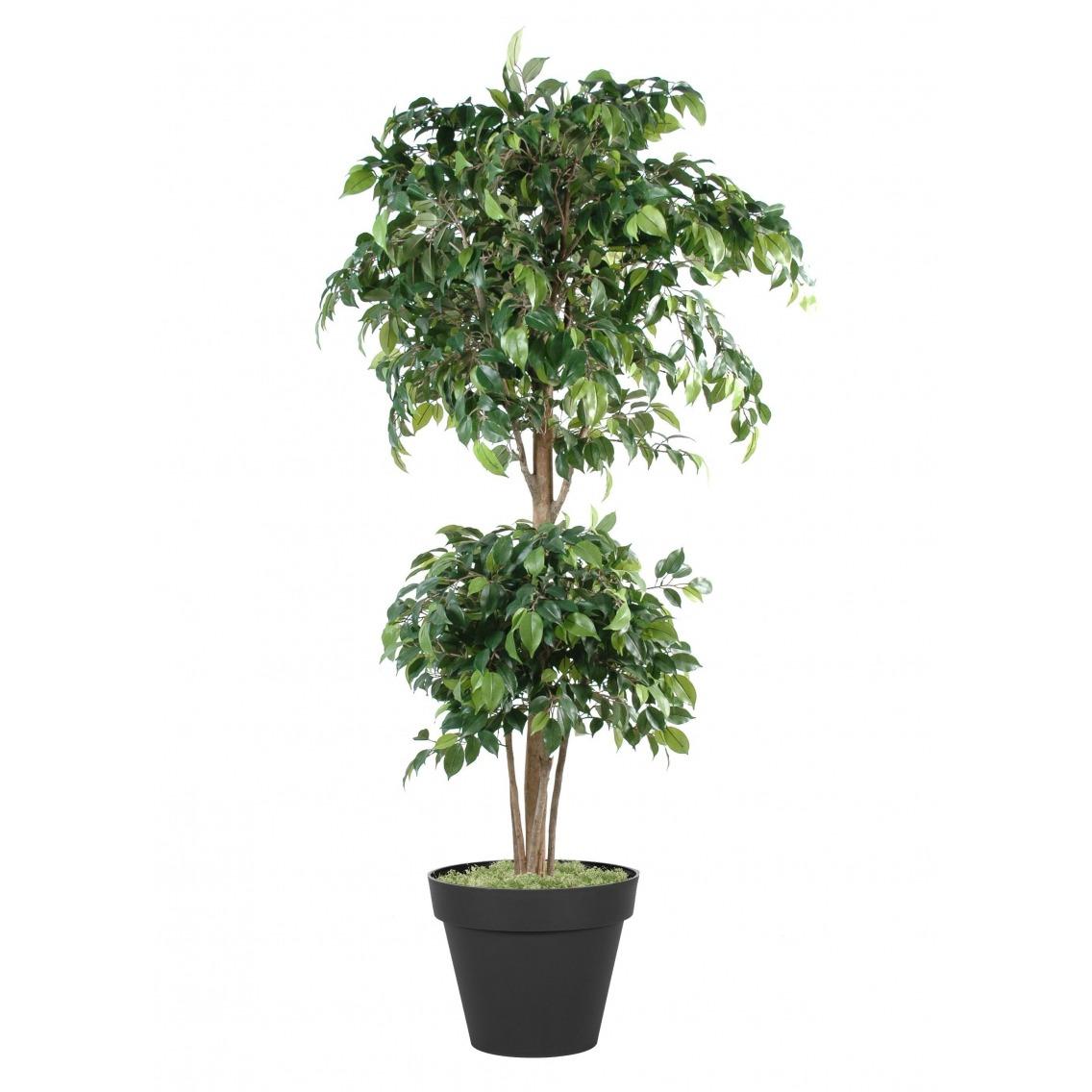 Ficus artificiel banian
