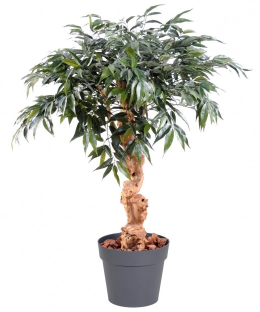 Chêne artificiel myrsine 95 cm