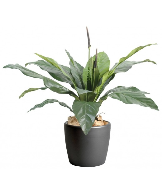 Fougère artificielle anthurium 80 cm