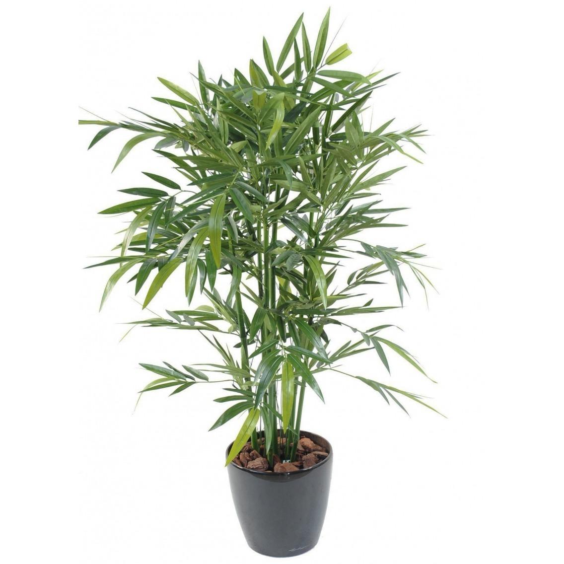 Bambou vert multi-cannes