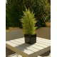 Juniperus artificiel