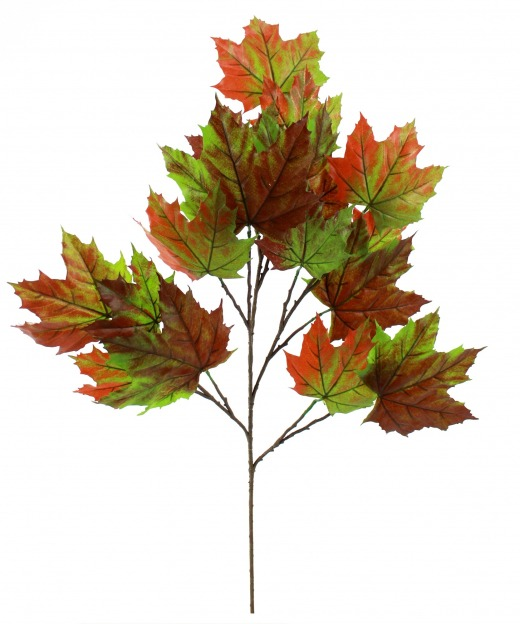 Branche de platane automne 70 cm