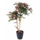 Bougainvillier artificiel fuchsia