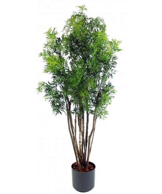Aralia ming artificiel