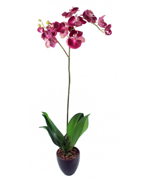 Phalaenopsis artificielle simple 90 cm