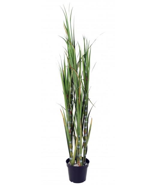 Plante canne à sucre artificielle 60 cm