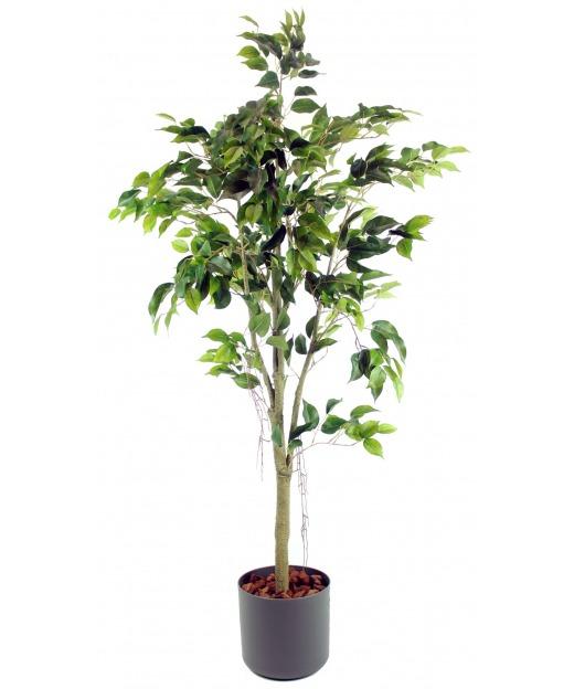 Ficus artificiel tronc blanc 150 cm