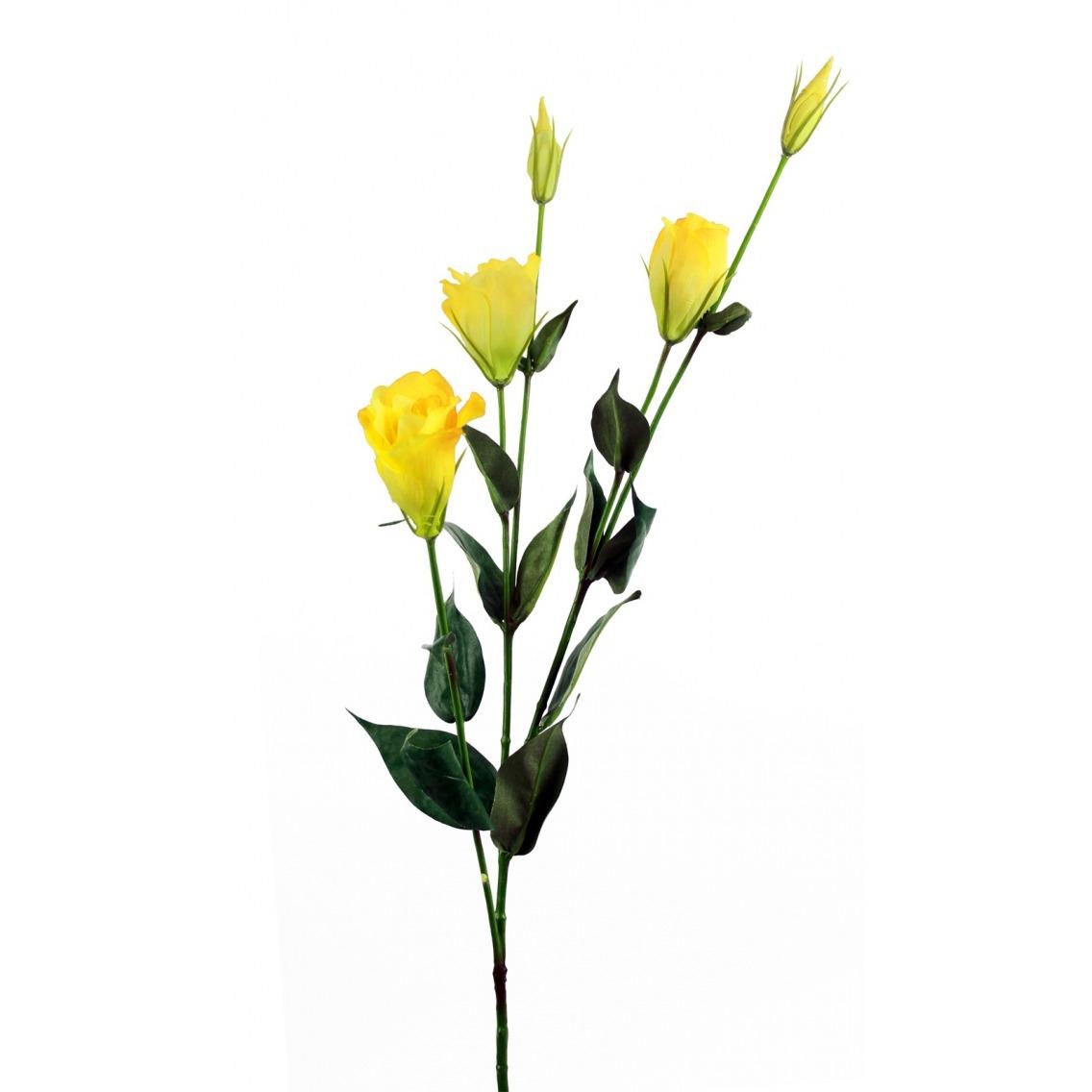 Lisianthus jaune