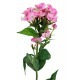Phlox artificiel rose