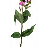 Phlox artificiel rose