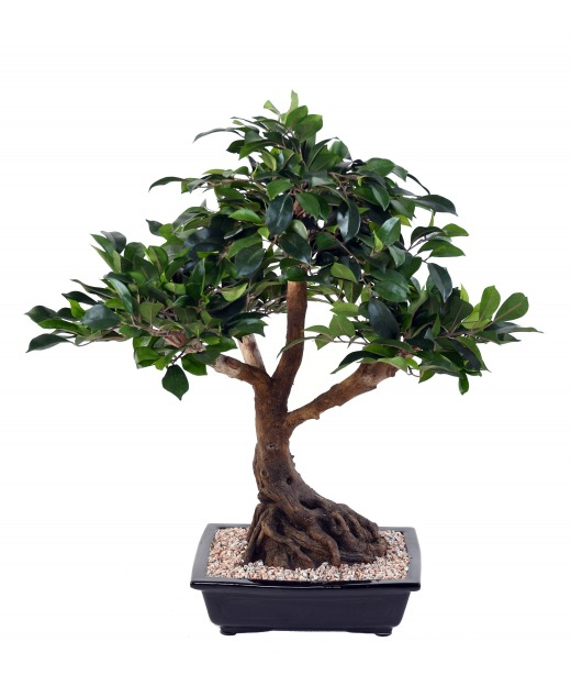Bonsai artificiel ficus 58 cm
