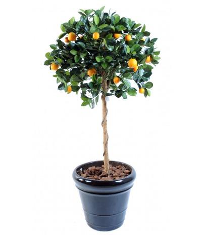 Oranger artificiel buisson