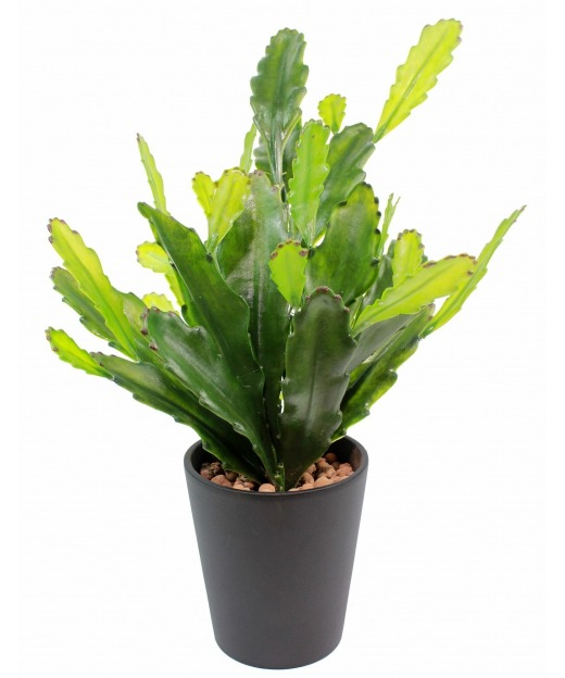 Cactus artificiel epiphyllum 53 cm