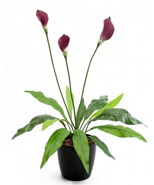 Arum maculatum artificiel 55 cm