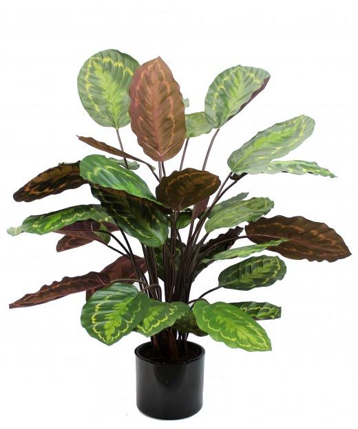 Calathea artificiel rosea picta 70 cm