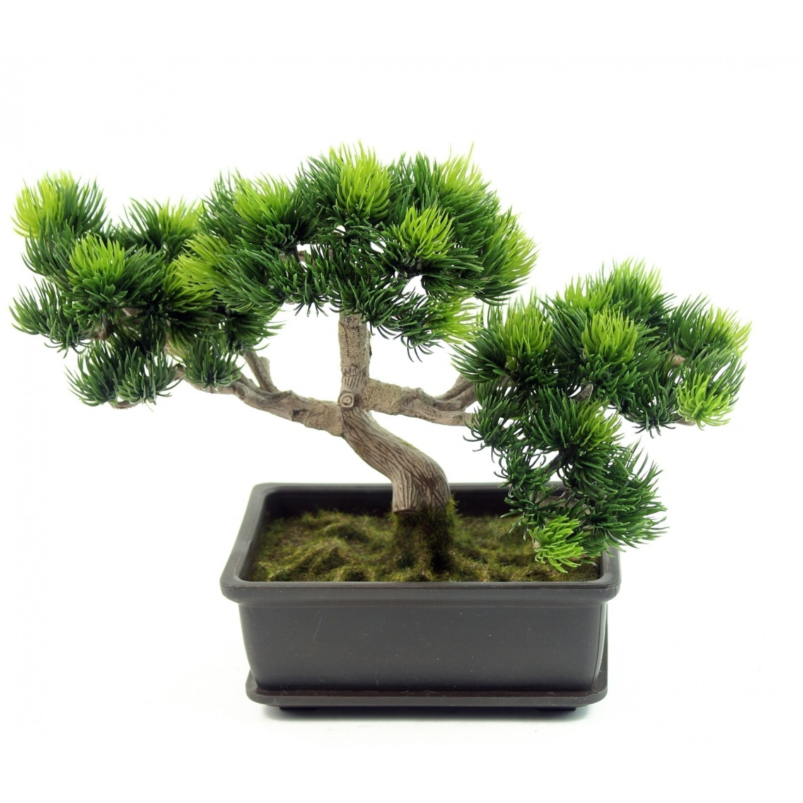 Bonsaï artificiel pinus
